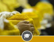 Oferta formativa Escuelas Doctorales